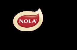 nola-vote-logo